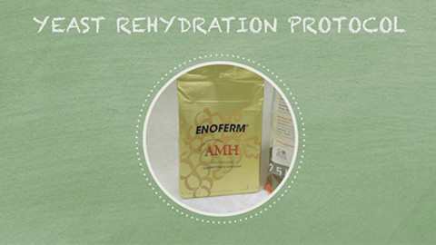 Rehydration Protocol for Lallemand Yeast